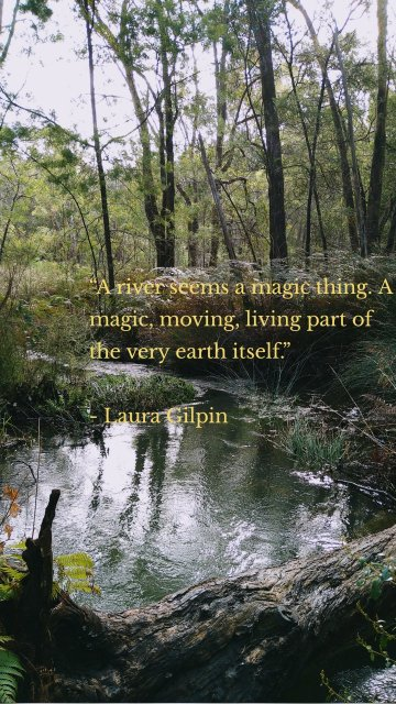 """""""A river seems a magic thing. A magic, moving, living part of the very earth itself."""" - Laura Gilpin"""